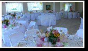 wedding-style-ktima-gamou-latania-a5
