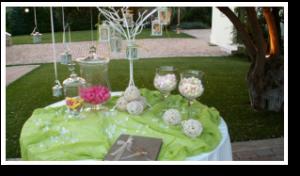 wedding-style-ktima-gamou-latania-b14