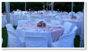 wedding-style-ktima-gamou-latania-b22
