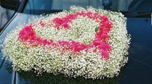 weddingstyle-diorganwsi18