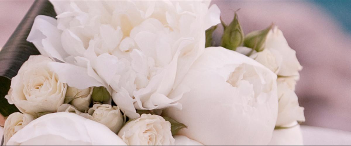 Flowers – Bonsai by Dimitrios Ballas