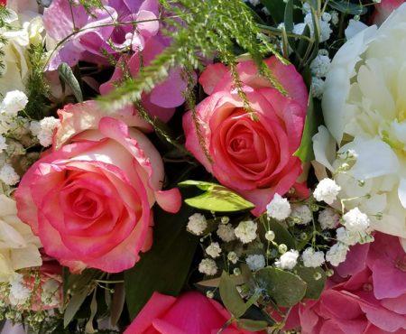 Anemoni flowers & Creations