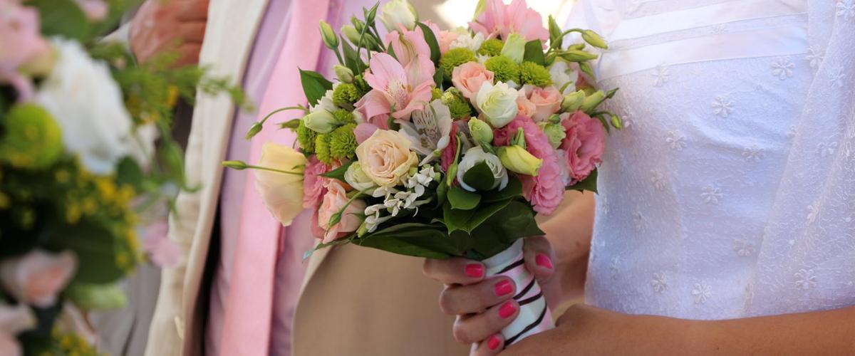 Flowers dafni